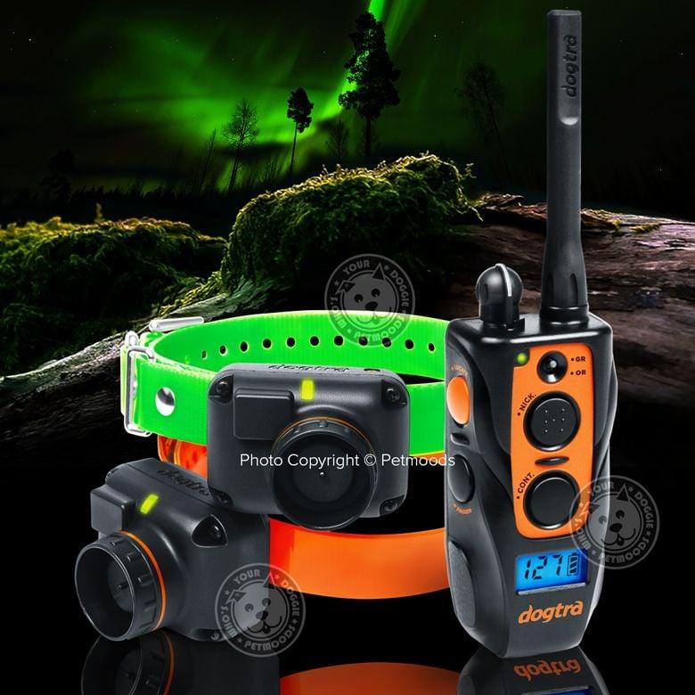 Dogtra 2702t Amp B Remote 2 Dog Training Beeper Collars