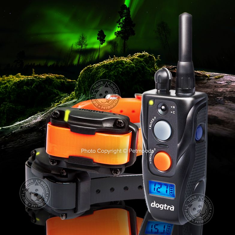 Dogtra 282c Ultra Compact E Collar 2 Dog Field Training 1