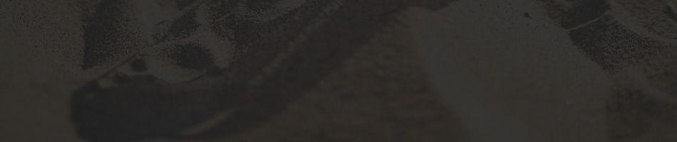 Ray-Ban Polarized Unisex Sunglasses 2