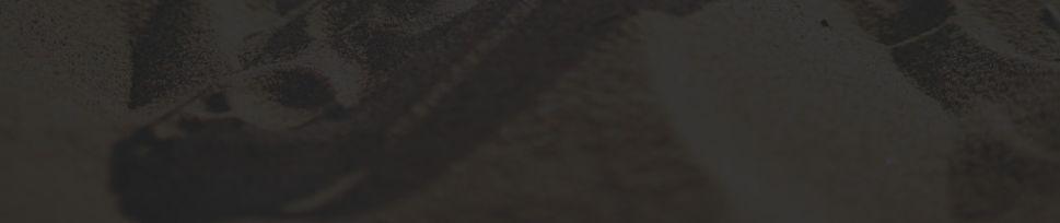Ray-Ban Polarized Unisex Sunglasses 18