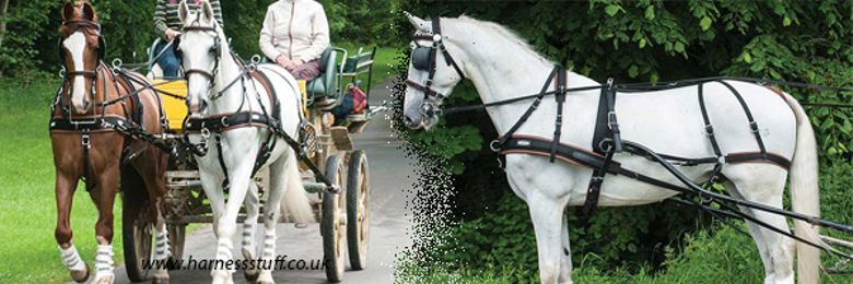 Zilco WebZ Horse Harness for Carriage Driving